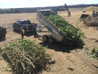 Countryboy Landscape & Tree Removal