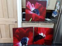 3 x Next Large Lovely Red Poppy Canvasses