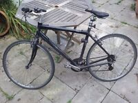 Black Giant Crs 3.0 Man's Bicycle