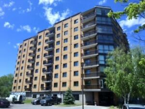 Furnished 2 Bedroom Condo with All Amenities - Sep 1