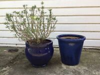 2 large blue garden pots