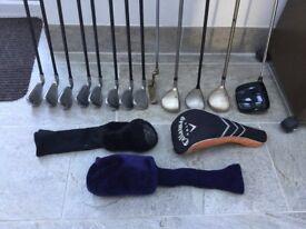 Full set ladies' golf clubs