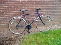 """GIANT, Hybrid Cycle, 22"""" Frame, 700c Alloy wheels, Mudguards, FULLY SERVICED."""