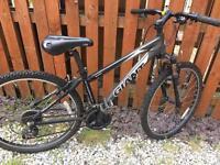 """Giant Aluxx 6000 mountain bike. 14"""" frame."""
