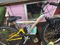 Teenagers/ adult bike