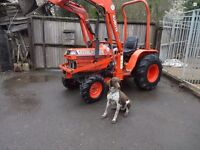 Kubota b2150 compact tractor complete with front loader