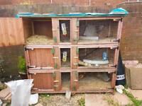 6ft treble ferret/rabbitt/guinea pig hutch