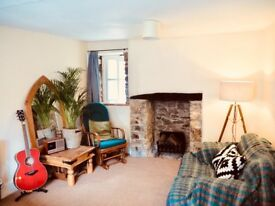 Lovely self contained studio flat - Ashburton