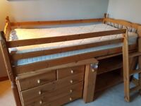 Cabin Bed with Ladder