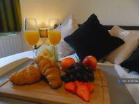 1 bedroom flat in Splott Road, Cardiff, CF24 (1 bed) (#1167543)