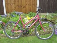 Ladies Raleigh Zest 15 Speed Cycle