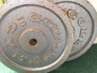 Gold's Gym 10kg plates