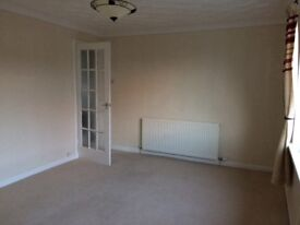 Bright flat to rent