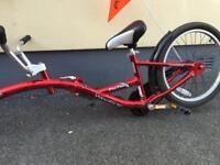 Wee rider, tag along, co rider bike