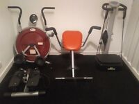 Ab trainer, sit up chair, vibro gym and stepper.