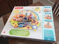FisherPrice Moonlight Meadow play gym