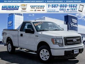 2013 Ford F-150 **Super Low kms!  Great Deal!**