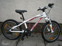 "Specialized Hotrock 20"" wheel mountain bike"