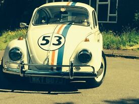 'Herbie' 1971 customised VW Beetle - this car makes everyone smile :-)