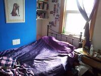 Double bedroom. 4 months. All bills included. Vegan/ veggie houseshare