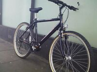 Raleigh Max adult mountain bike