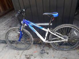 Blue mountain bike for teenage boy.