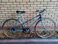 LIGHT RALEIGH WISP LADIES BIKE IN GREAT CONDITION NEW BRAKE PADS NEW CHAINS NEW GEAR NEW SADDLE
