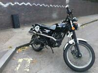 Sinnis Scrambler - stylish 125cc bike for sale!