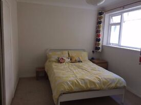 Large double room in nice flat near to town and station