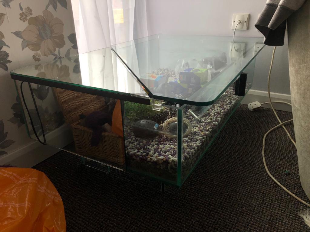 Large Fish Tank Coffee Table In Alton Hampshire Gumtree