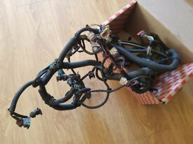 Peugeot 306 GTI 6 Engine Race Harness - Stripped down for weight saving