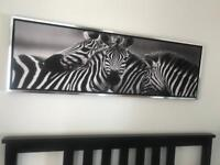 Zebra Canvas with Silver Frame.