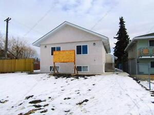FULLY RENOVATED 2 BDRM, 1 BATH BASEMENT SUITE IN N.E. EDMONTON