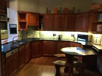 "Used ""Alex Wood"" Hand Crafted Kitchen Including Appliances For Sale"