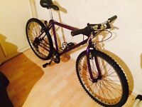 Unisex bike in exellent condition free delivery