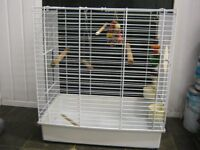 PARROT CAGE / BIRD CAGE