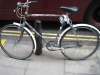 Apollo Grey Gents bike