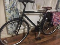Good Condition Adult bike with shipping basket for sale