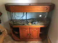 4ft aquarium with solid wood stand and extras