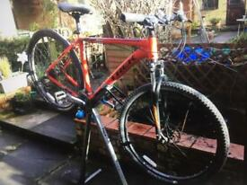 Trek mountain bike looking for a new home