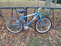 """Lightweight RALEIGH Mountain Bike . 18 Speed. Fully Serviced & Ready To Ride. Guaranteed. 17"""" Frame"""