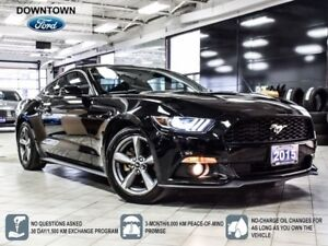 2015 Ford Mustang Premium, Navigation, Trade-in Car Proof Verifi