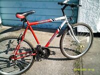 mens mountan bike