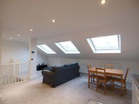 Stunning & large top floor 1 bed flat minutes from Turnpike Lane station & Wood Green High Street