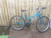 LADIES MOUNTAIN BIKE FOR SALE.