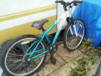 Girls mountain bike for petrol hedge trimmer/chainsaw?