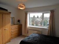 Large Double Room in Alwoodley Flatshare!