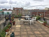 Large two bedroom apartment with roof terrace