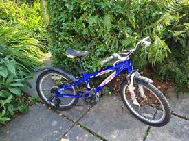 Carrera Blast kids mountain bike 20''