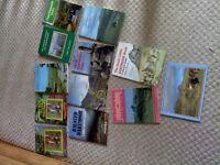 A COLLECTION OF 12 DARTMOOR BOOKS